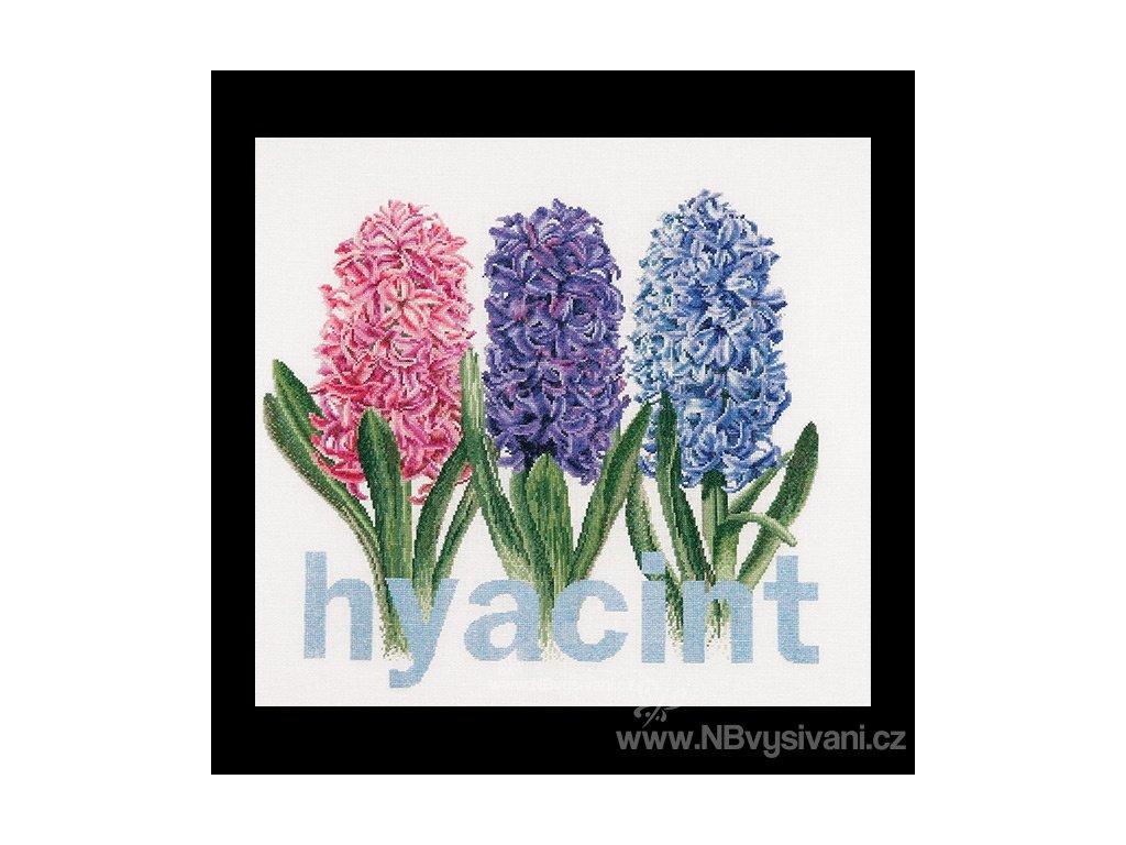 THG-434A Hyacinty (Aida)