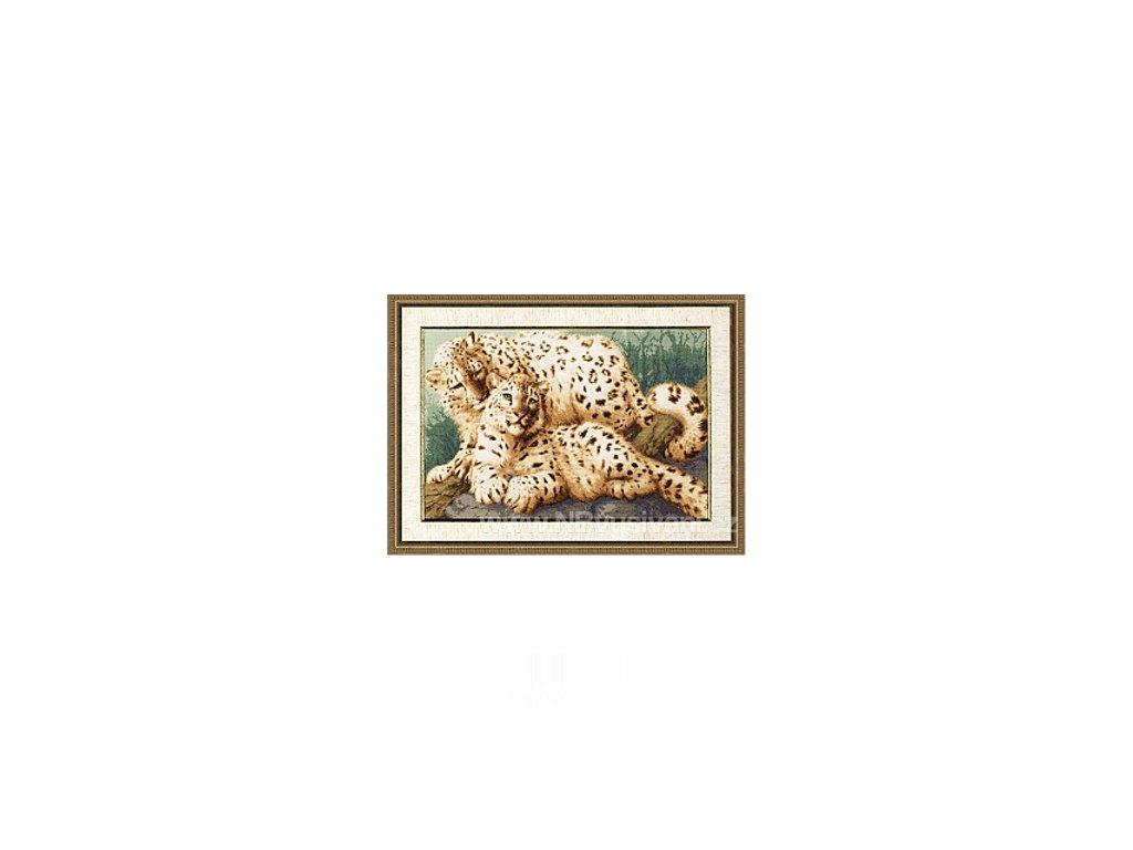 ZR-DZH026 Sněžní leopardi