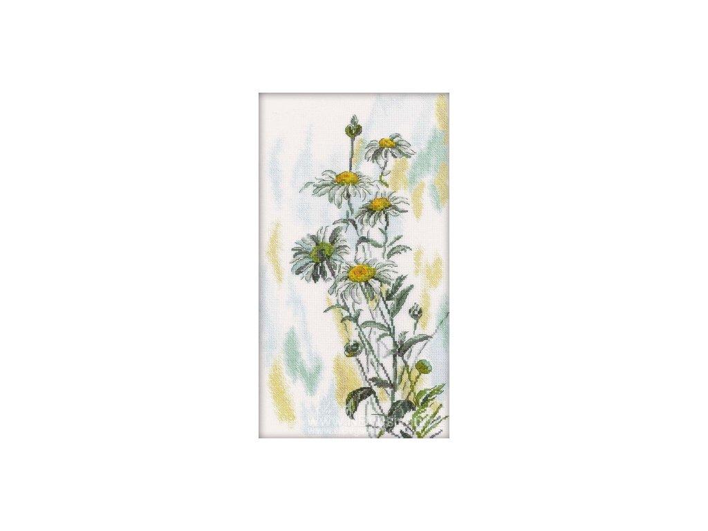 RT-M261 Květy kopretin