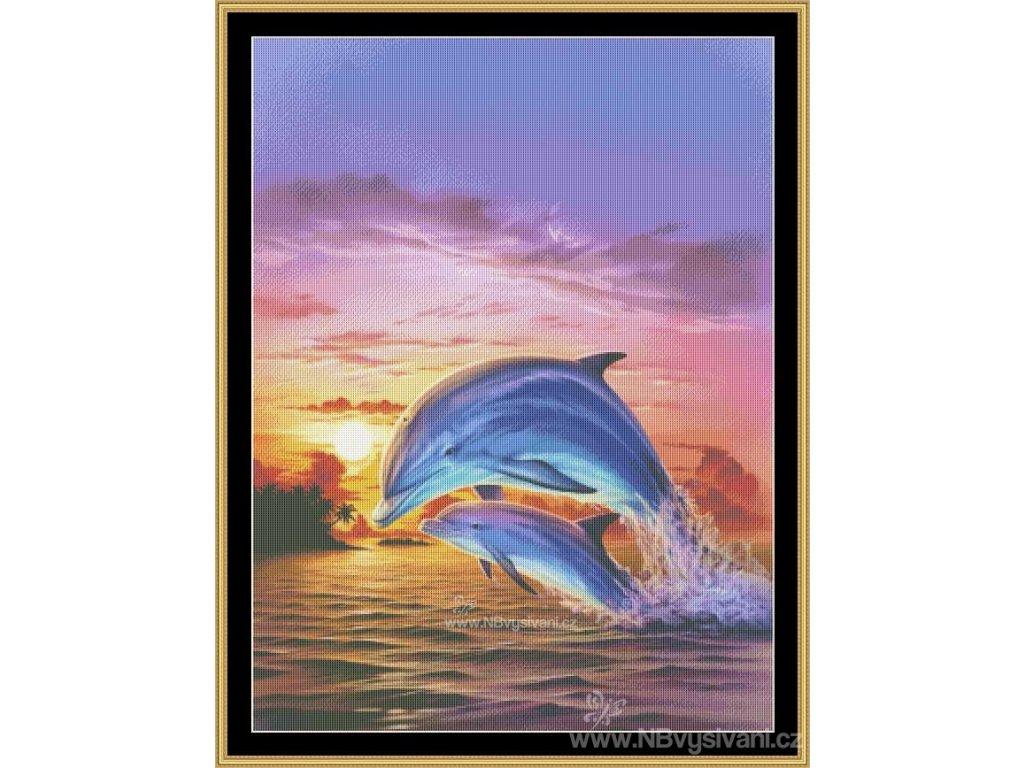 MS-MGL26 Sunset Dolphin (předloha)