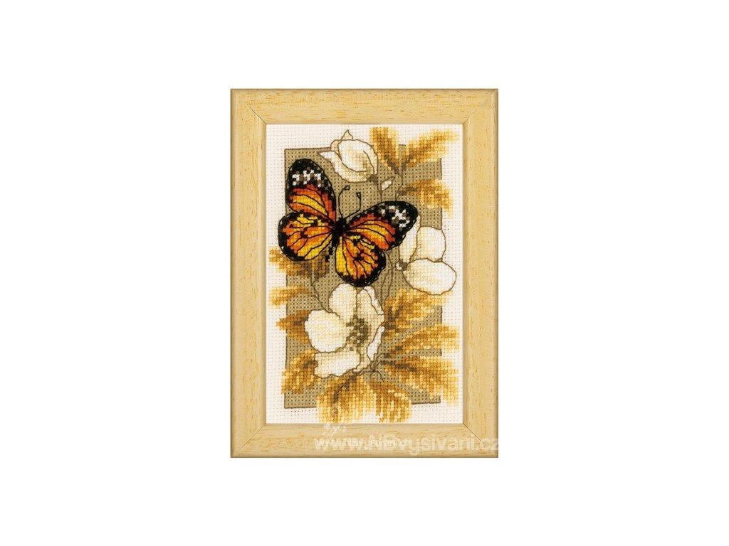 VE-PN0144770 Motýl a květy I.