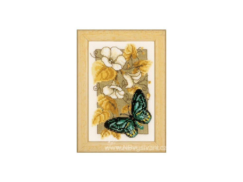 VE-PN0144802 Motýl a květy II.