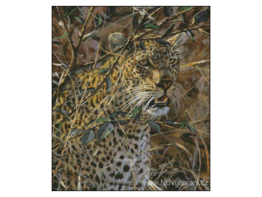 Leopard (Aida 18ct)