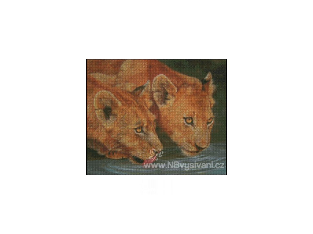 Two Lion Cubs Drinking (Aida 18ct)