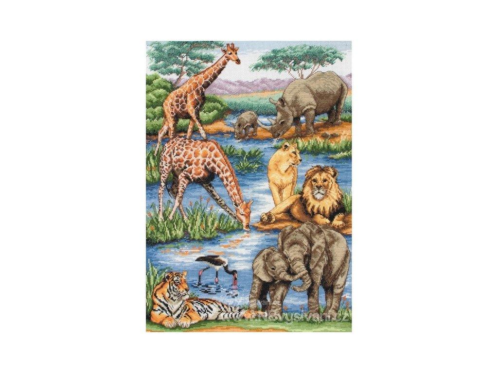 AM5678000-01212 African Wildlife