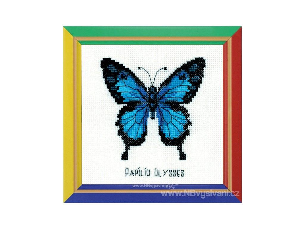 RIO-HB095 Modrý motýl