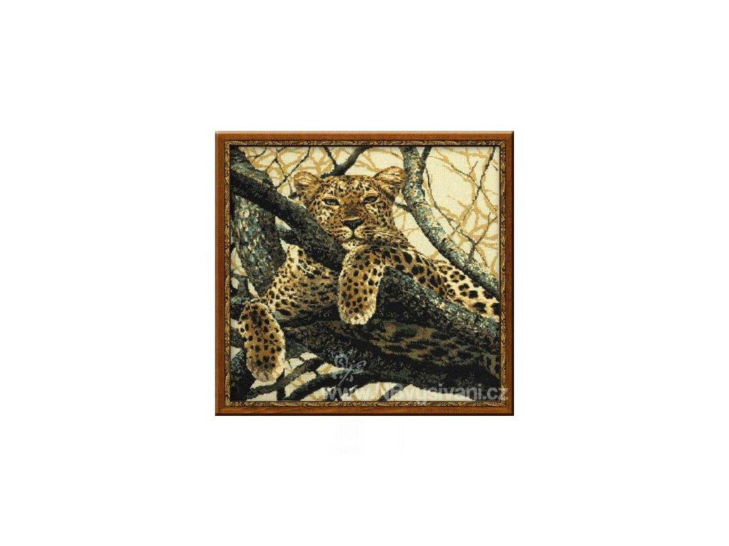 RIO-937 Leopard