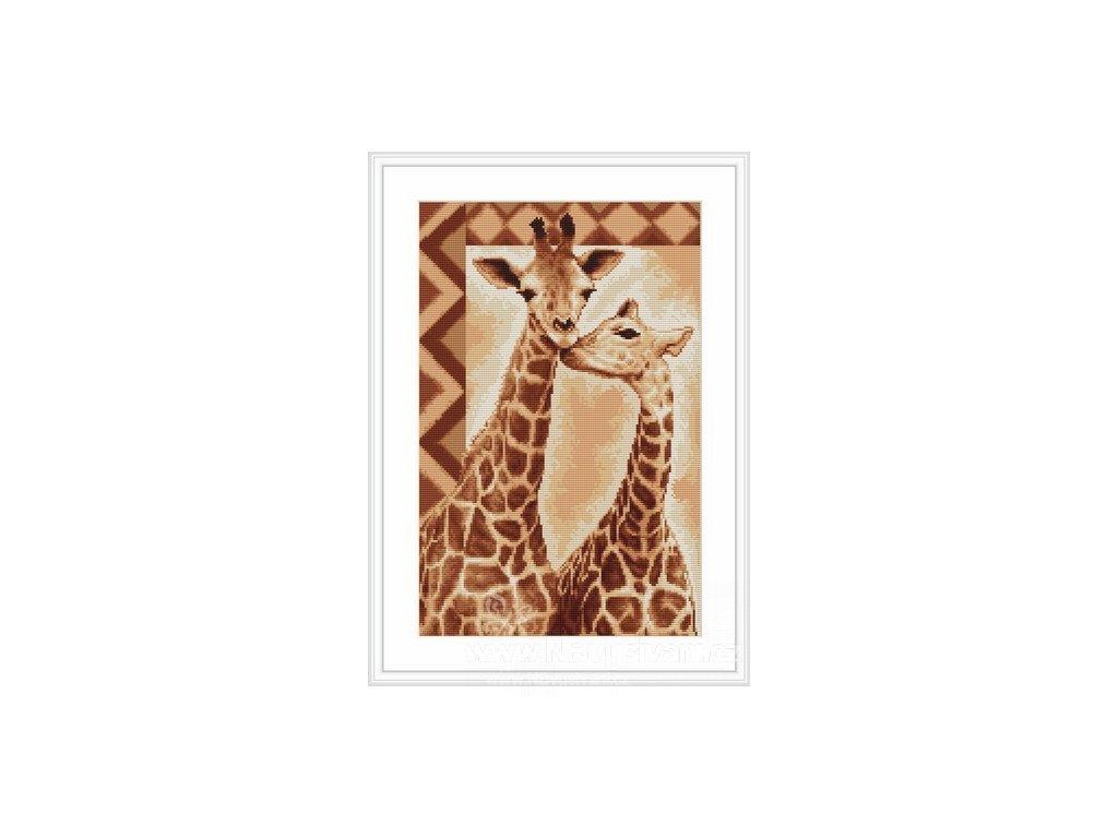 LUC-B2216 Zamilované žirafy