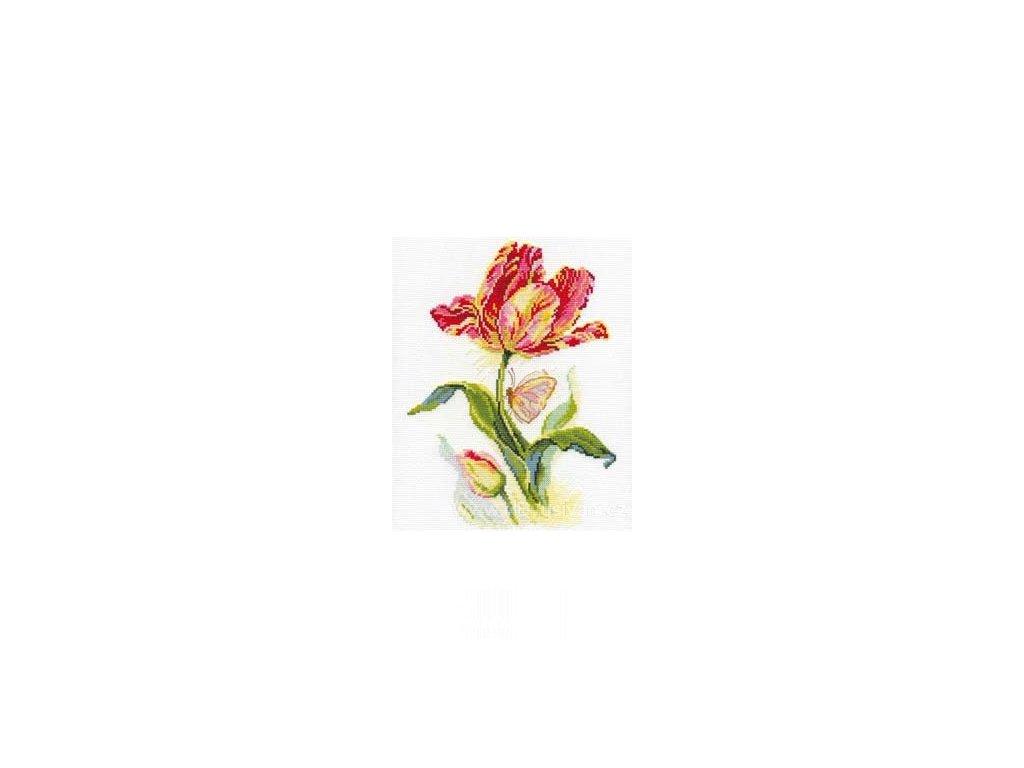AL2-14 Tulipán a motýl