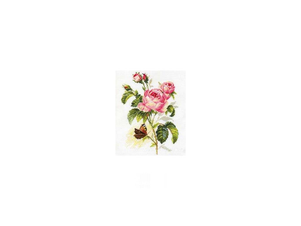 AL2-13 Růže a motýl