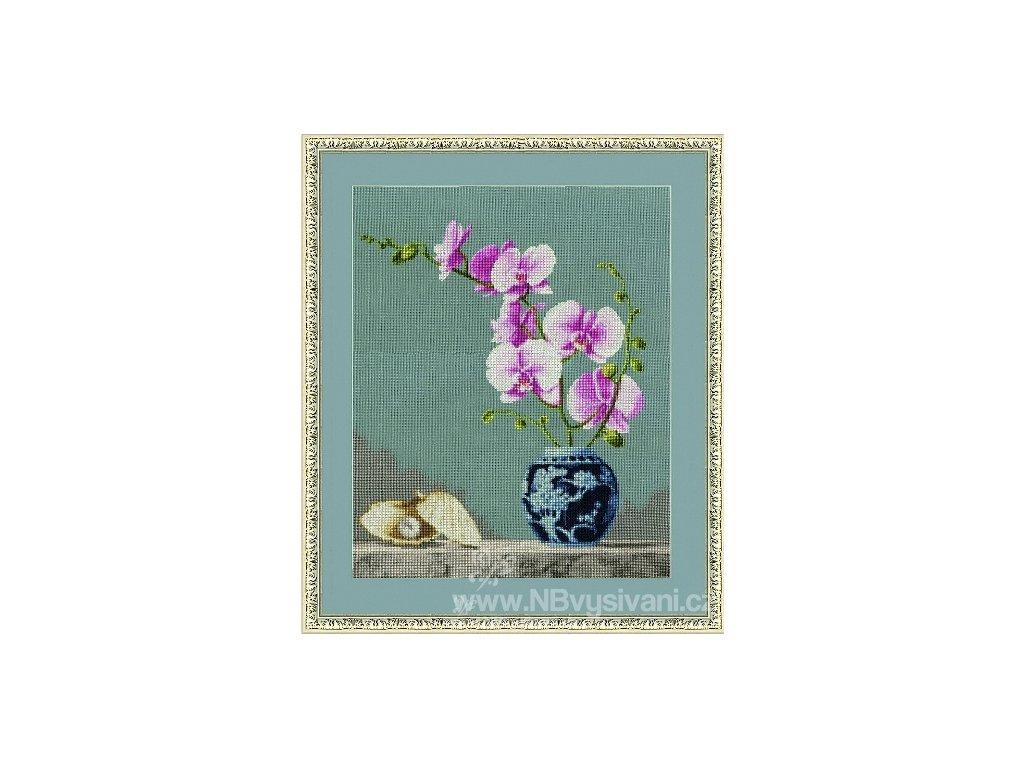 ZR-SZH024 Orchidea