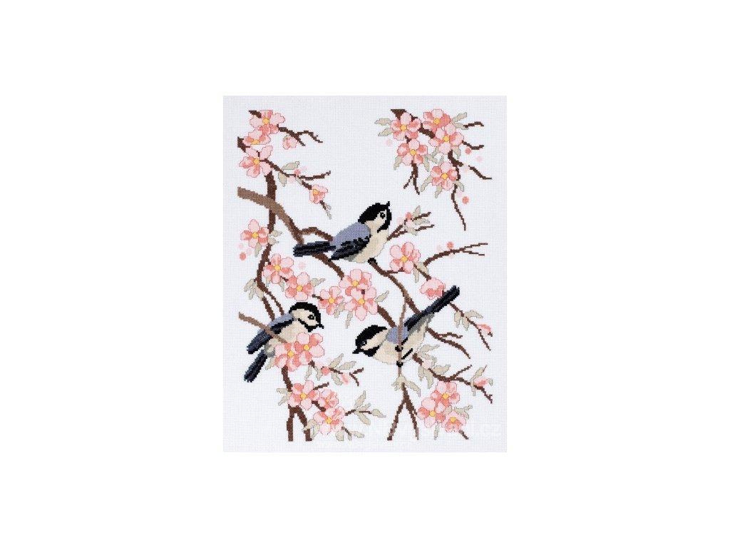 J021-1452 Sýkorky a jabloňové květy