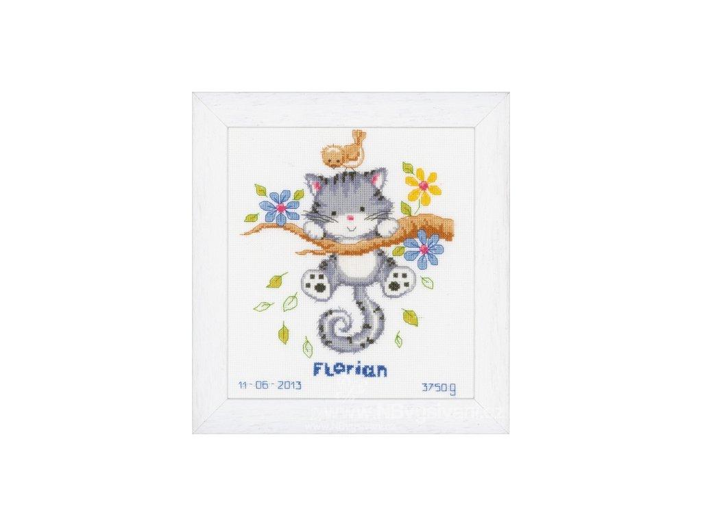 VE-PN0146276 Narozeninový sampler - kotě