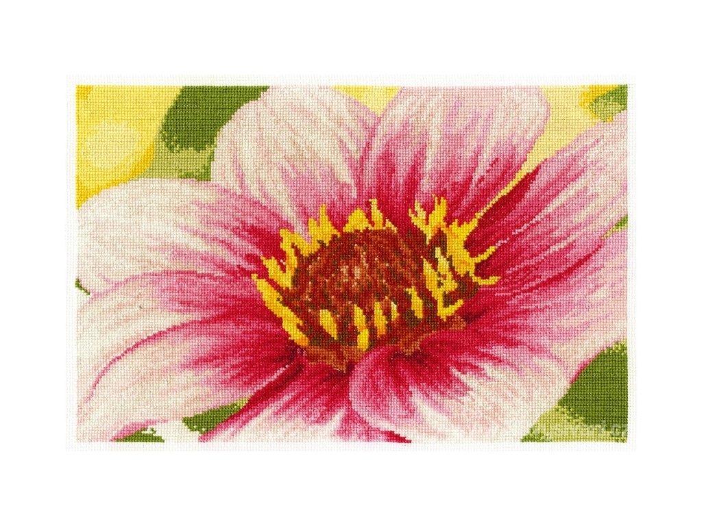 DMC-BK1340 Květ jiřiny (doprodej)