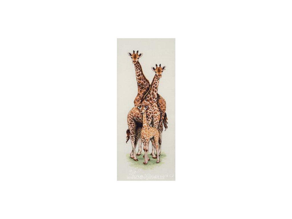 A-PCE740 Žirafy (doprodej)