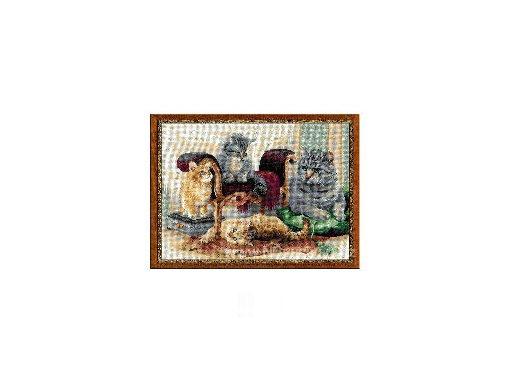 RIO-1327 Kočičí rodina