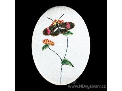 THG-1021A Motýlek na květu (Aida)