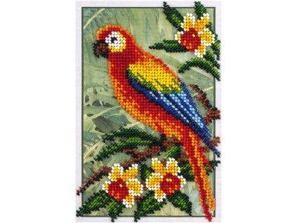 KL8-144 Papoušek (korálkové vyšívání)