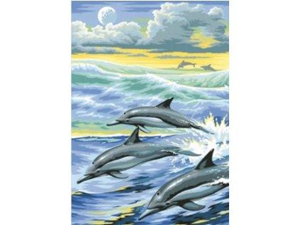 AZDP-1062 Delfíni