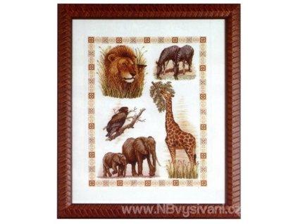 ARP988.6443.10 Zvířata Afriky (doprodej)