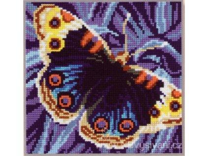 ADA5.081 Polštář s modrým motýlkem