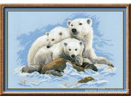 RIO-1033 Lední medvědi