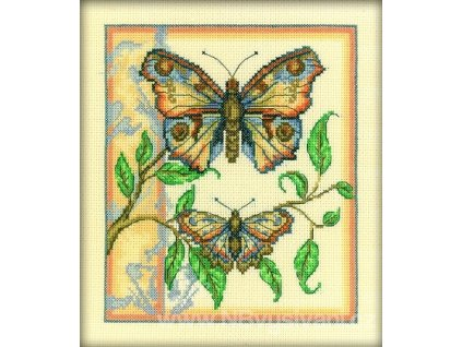 RT-C130 Dvojice motýlů I.