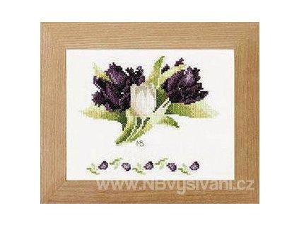 ART-L-PN0008055 (34940) Bílé a černé tulipány (doprodej)
