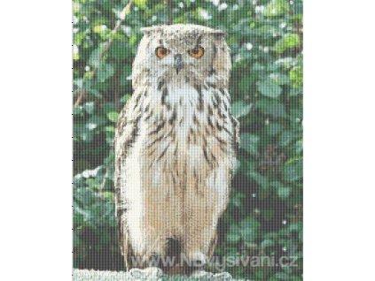 IC11421-RCIN025 Standing Owl (předloha)
