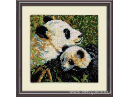 DW-2522 Pandas - Pandy