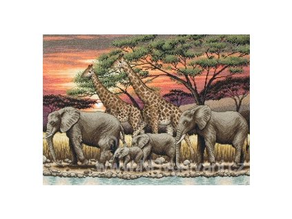 AM5678000-01026 African Sunset