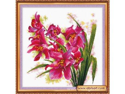 AA-AH003 Orchidej