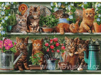 IC21866 Kitchen Cats (Aida 18ct)