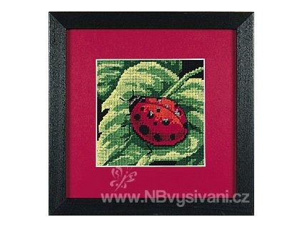 7170 Ladybug - Beruška