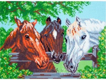 CDA-0100 Koně v ohradě
