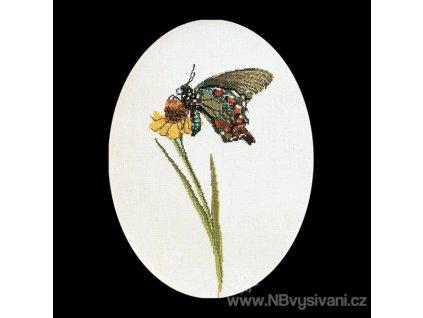 THG-1020A Motýl na květu (Aida)