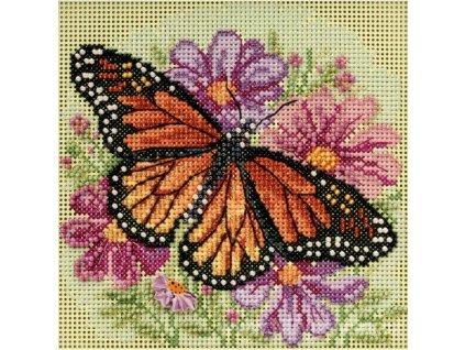 MH14-5105 Motýlek