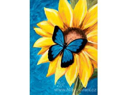 WD-031 Motýl a slunečnice