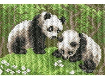 CDA-0516 Pandy