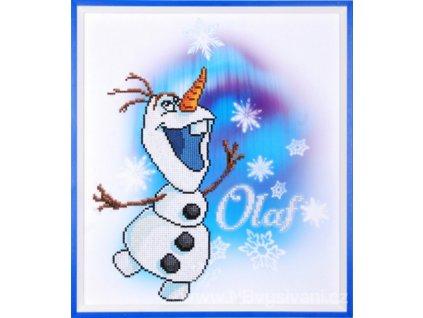 VE-PN0173563 Olaf