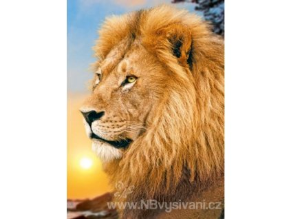 WD-070 Lví král
