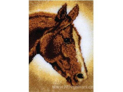 N-426404 Hlava koně (tapico)
