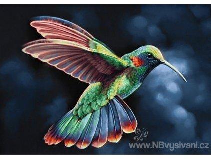 WD-058 Kolibřík