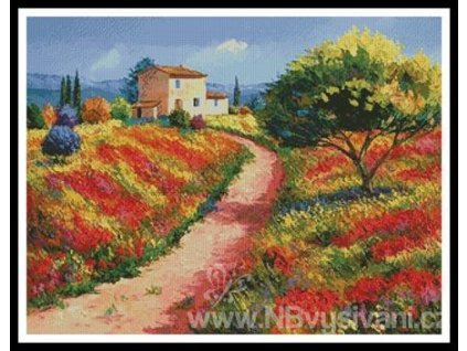 IC10043-11298 Provencal House (Aida 18ct)