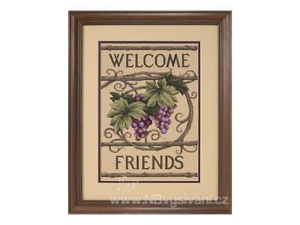 13733 Welcome Friends - Vítejte, přátelé