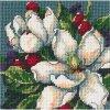 7217 Magnolias - Magnolie