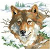 IC2690-1136 Winter Wolf (Aida 14ct)