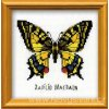 RIO-HB096 Motýlek