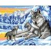 ARP988.0132.231 Vlci v zimě