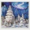 CHI45-03 Krása zimního lesa